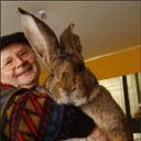 Biggest..  Bunny…   Ever.
