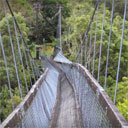 Hiking Suspension Bridge Collapses