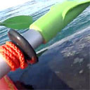 Whale Lifts Kayak